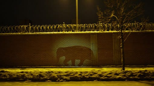 Projection of a silhouette of an elephant over a brick fence