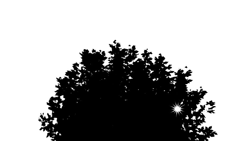 A black and white silhouette of a tree with light beaming through