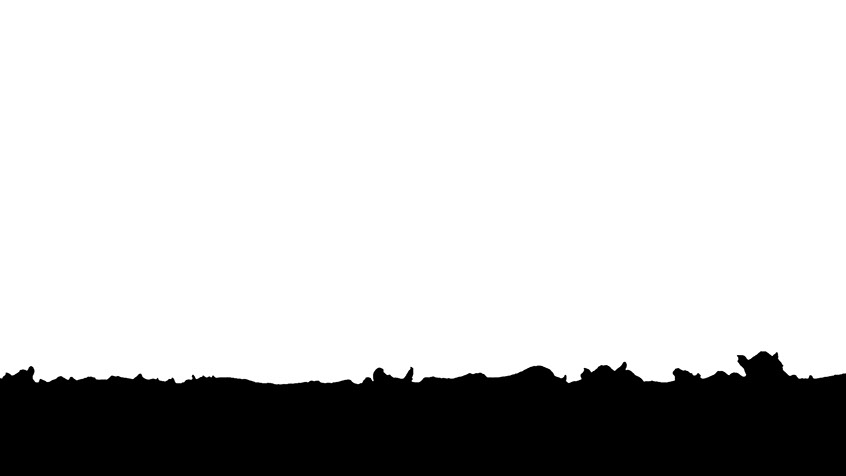 Black and White Silhouette of cows on the field